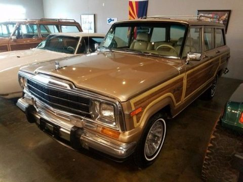 Desirable color 1989 Jeep Grand Wagoneer Limited 4X4 for sale