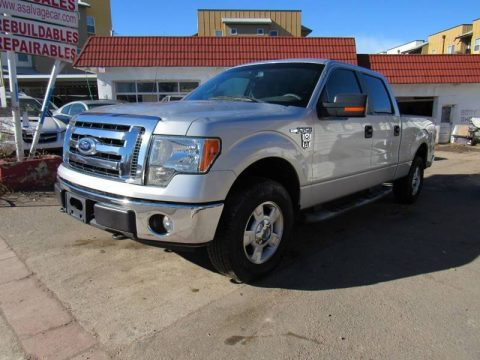 hail damage 2009 Ford F 150 FX4 4×4 for sale